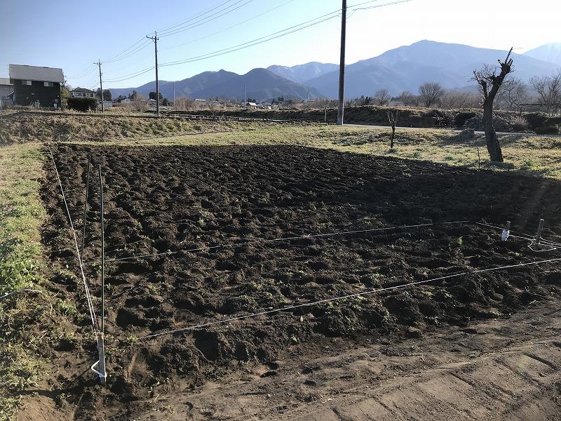 畑の画像2