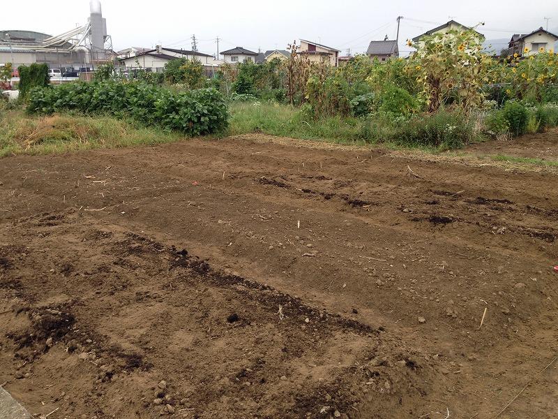 粘性土の畑